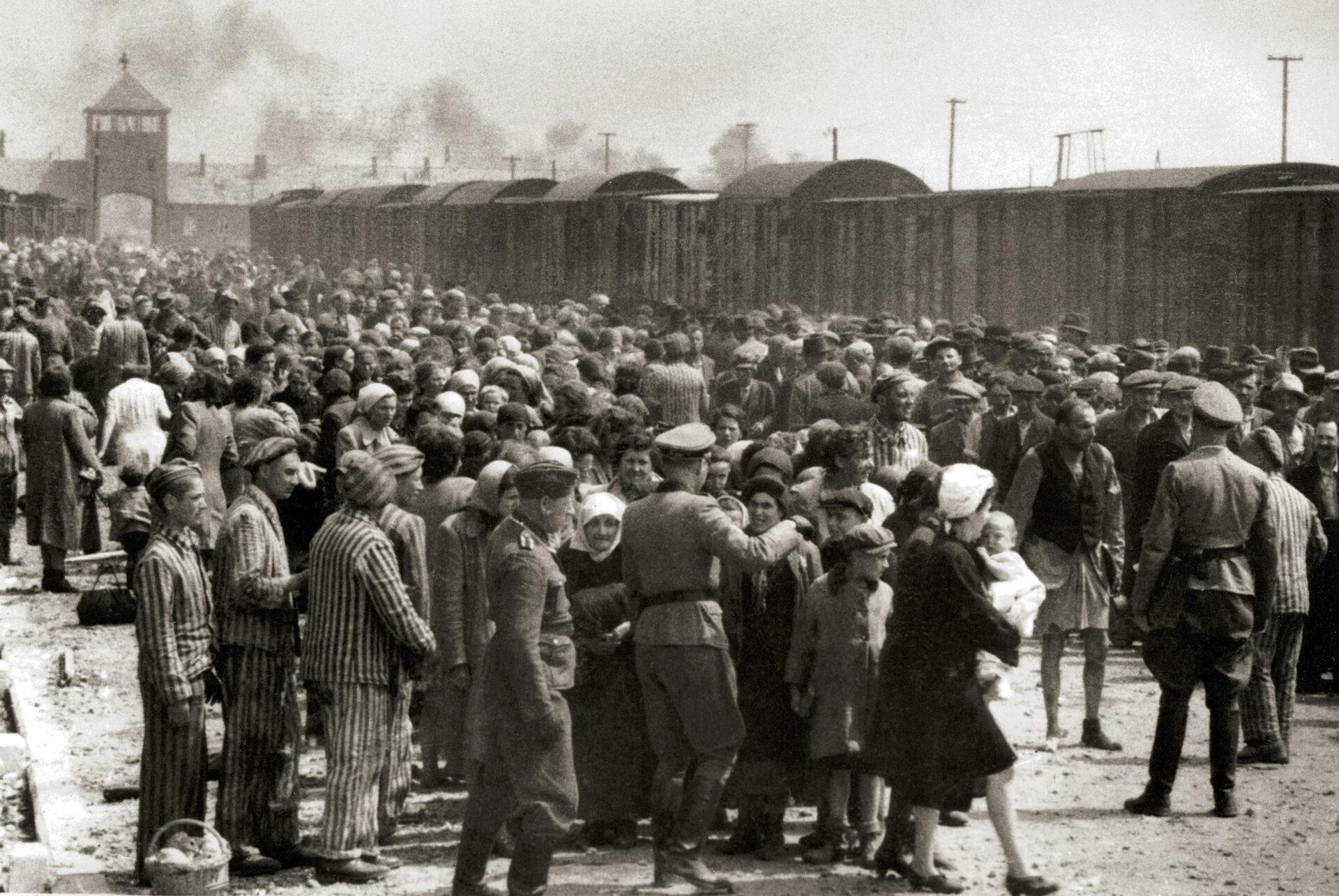 В Украине появилась крупнейшая в Восточной Европе точка доступа к архиву свидетельств о Холокосте и коллекции Спилберга